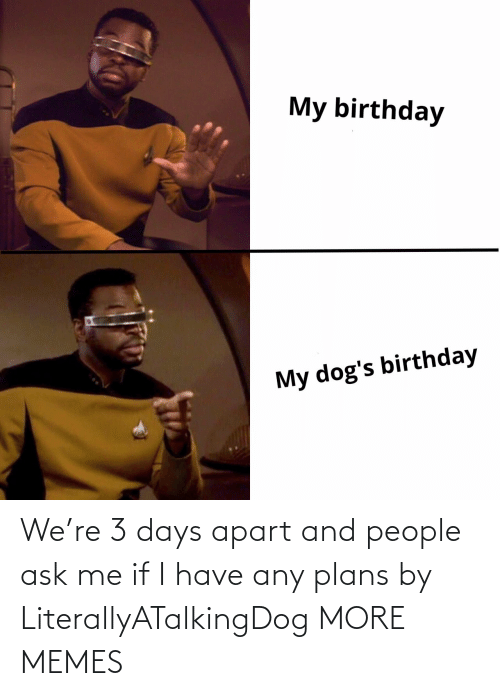 Plans: We're 3 days apart and people ask me if I have any plans by LiterallyATalkingDog MORE MEMES