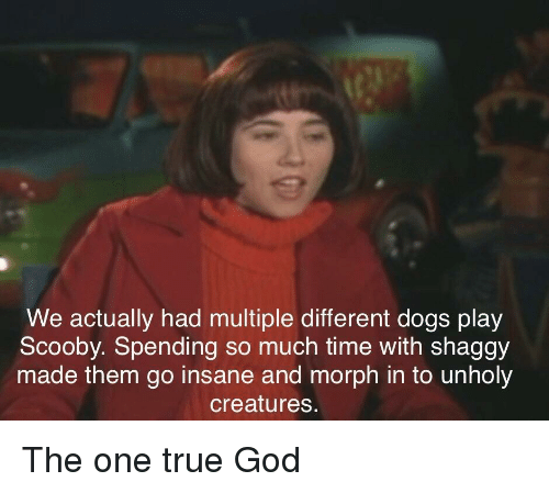 One True: We actually had multiple different dogs play  Scooby. Spending so much time with shaggy  made them go insane and morph in to unholy  creatures. The one true God