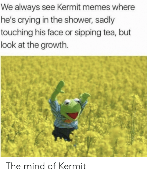 Crying, Memes, and Shower: We always see Kermit memes where  he's crying in the shower, sadly  touching his face or sipping tea, but  look at the growth. The mind of Kermit