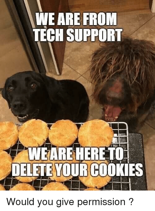 Cookies, Tech Support, and You: WE ARE FROM  TECH SUPPORT  WEARE HERE TO  DELETE YOUR COOKIES Would you give permission ?
