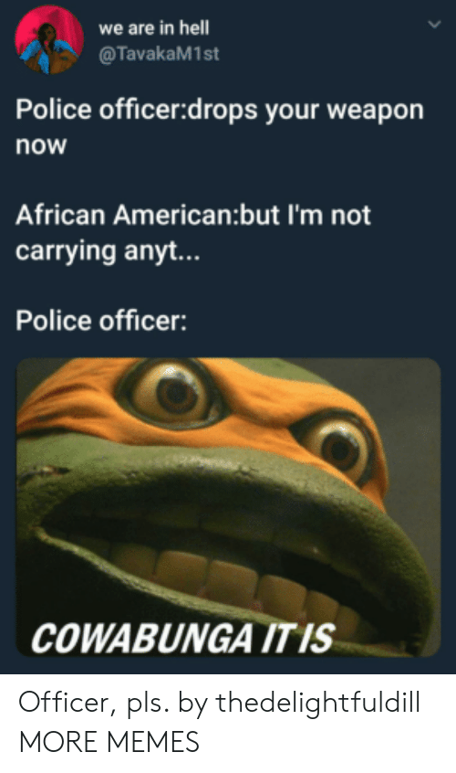 Dank, Memes, and Police: we are in hell  @TavakaM1st  Police officer:drops your weapon  now  African American:but I'm not  carrying anyt...  Police officer:  COWABUNGA ITIS Officer, pls. by thedelightfuldill MORE MEMES
