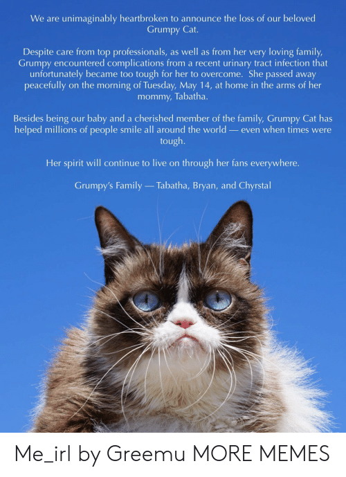 Grumpy Cat: We are unimaginably heartbroken to announce the loss of our beloved  Grumpy Cat.  Despite care from top professionals, as well as from her very loving family,  Grumpy encountered complications from a recent urinary tract infection that  unfortunately became too tough for her to overcome. She passed away  mommy, Tabatha.  Besides being our baby and a cherished member of the family, Grumpy Cat has  helped millions of people smile all around the world _even when times were  tough.  Her spirit will continue to live on through her fans everywhere.  Grumpy's Family  Tabatha, Bryan, and Chyrstal Me_irl by Greemu MORE MEMES