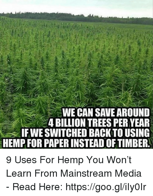 Timbers: WE CAN SAVE AROUND  4 BILLION TREES PER YEAR  IF WE SWITCHED BACK TO USING  HEMP FOR PAPERINSTEAD OF TIMBER 9 Uses For Hemp You Won't Learn From Mainstream Media - Read Here: https://goo.gl/iIy0Ir