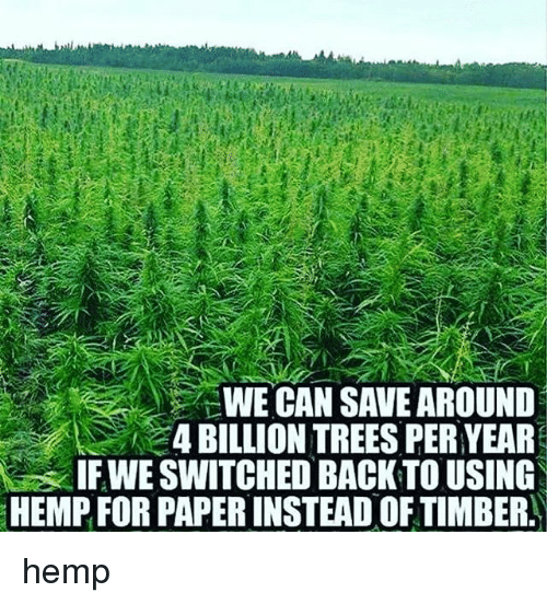 Timbers: WE CAN SAVE AROUND  4 BILLION TREES PER YEAR  IF WE SWITCHED BACK TO USING  HEMP FOR PAPERINSTEAD OF TIMBER hemp