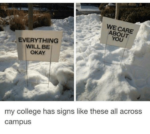 College, Okay, and Signs: WE CARE  ABOUT  YOU  EVERYTHING  WILL BE  OKAY  my college has signs like these all across  campus