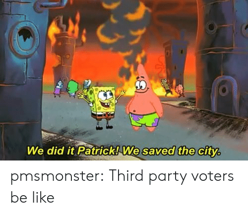 We Did It Patrick We Saved The City: We did it Patrick!We saved the city pmsmonster:  Third party voters be like