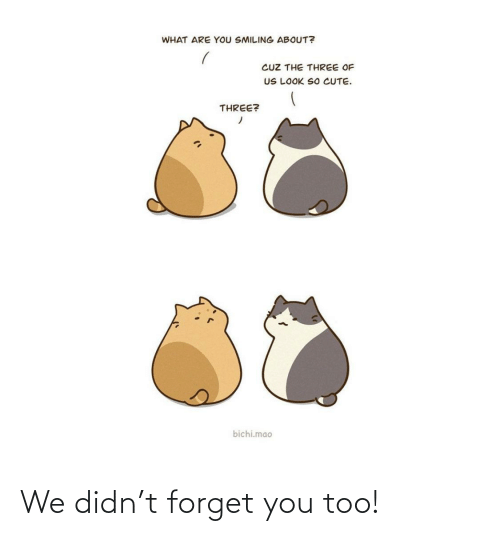 forget you: We didn't forget you too!