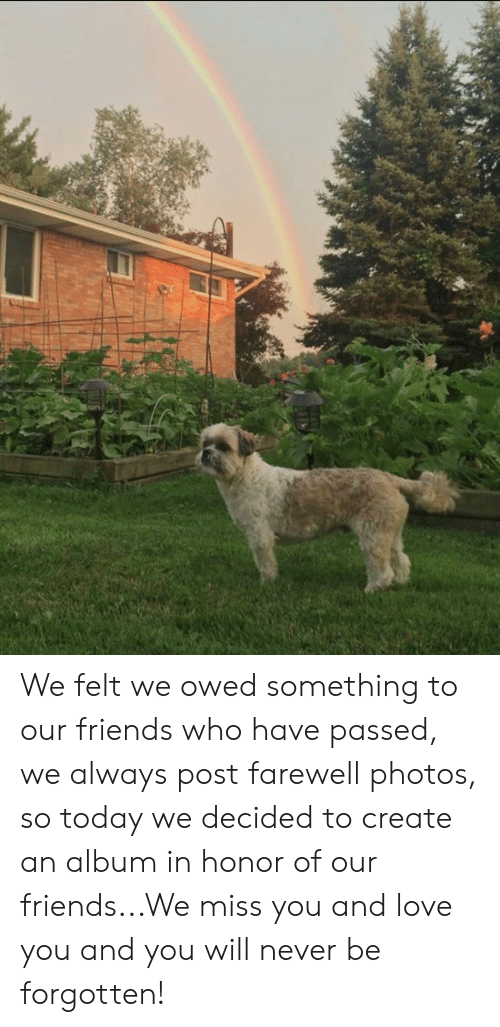 We Miss You: We felt we owed something to our friends who have passed, we always post farewell photos, so today we decided to create an album in honor of our friends...We miss you and love you and you will never be forgotten!
