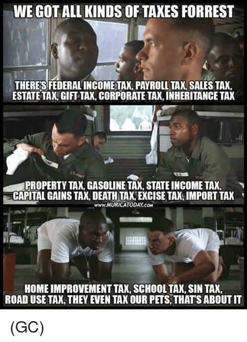 Memes, School, and Taxes: WE GOT ALL KINDS OF TAXES FORREST  THERESFEDERALINCOMETAX. PAYROLL TAX SALES TAX  ESTATE TAX,GIFT TAX, CORPORATE TAX, INHERITANCE TAX  PROPERTY TAX, GASOLINE TAX, STATE INCOME TAX,  CAPITAL GAINS TAX, DEATH TAK, EXCISE TAX, IMPORT TAK  www.MURICATODAY.COM  HOME IMPROVEMENT TAX, SCHOOL TAX, SIN TAX  ROAD USE TAX, THEY EVEN TAX OUR PETS, THATS ABOUT IT (GC)