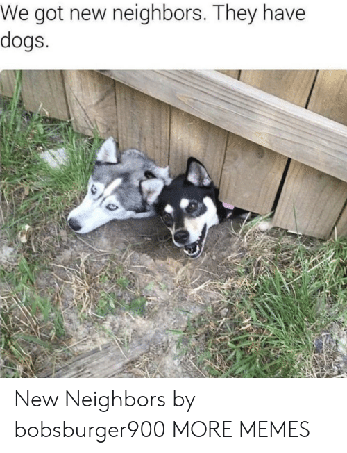 Dank, Dogs, and Memes: We got new neighbors. They have  dogs New Neighbors by bobsburger900 MORE MEMES