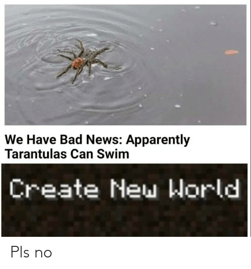Apparently, Bad, and News: We Have Bad News: Apparently  Tarantulas Can Swim  Create New World Pls no