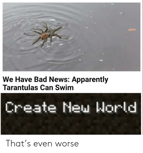 Apparently, Bad, and News: We Have Bad News: Apparently  Tarantulas Can Swim  Create New World That's even worse