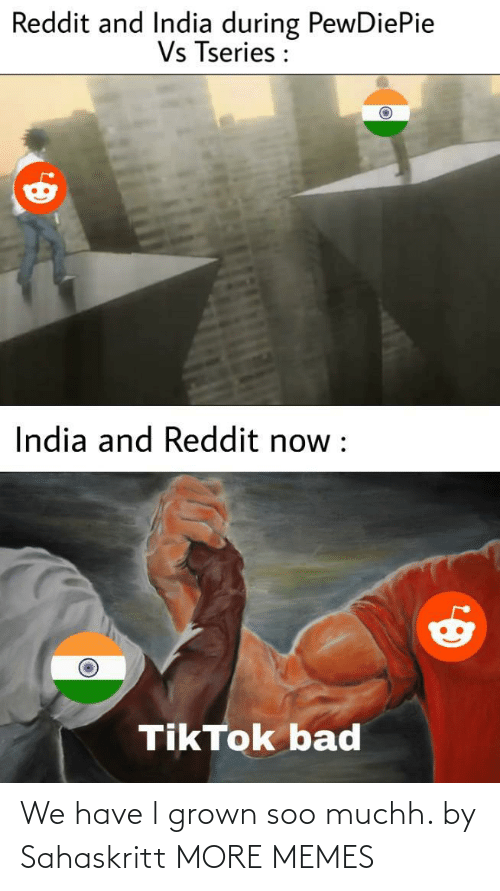 We Have: We have l grown soo muchh. by Sahaskritt MORE MEMES