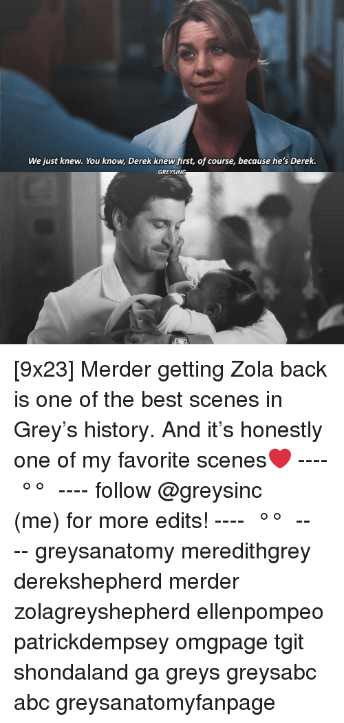Abc, Memes, and Zola: We just knew. You know, Derek knew first, of course, because he's Derek.  GREYSING [9x23] Merder getting Zola back is one of the best scenes in Grey's history. And it's honestly one of my favorite scenes❤️ ---- ≪ °✾° ≫ ---- follow @greysinc (me) for more edits! ---- ≪ °✾° ≫ ---- greysanatomy meredithgrey derekshepherd merder zolagreyshepherd ellenpompeo patrickdempsey omgpage tgit shondaland ga greys greysabc abc greysanatomyfanpage
