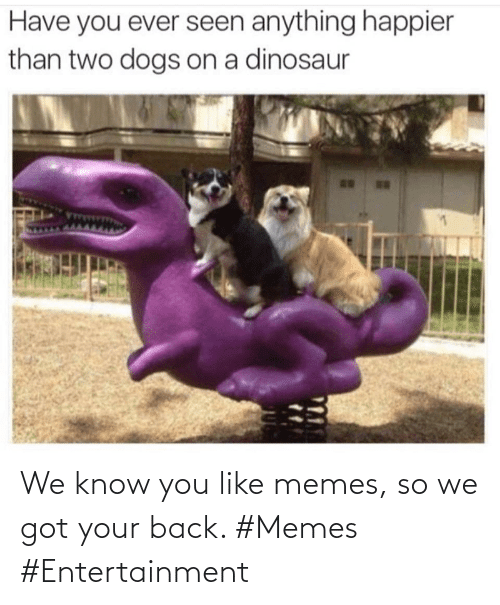got your back: We know you like memes, so we got your back. #Memes #Entertainment