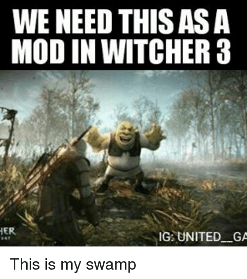 Memes, 🤖, and Witcher: WE NEED THIS ASA  MOD IN WITCHER a  HER  IG UNITED GA This is my swamp
