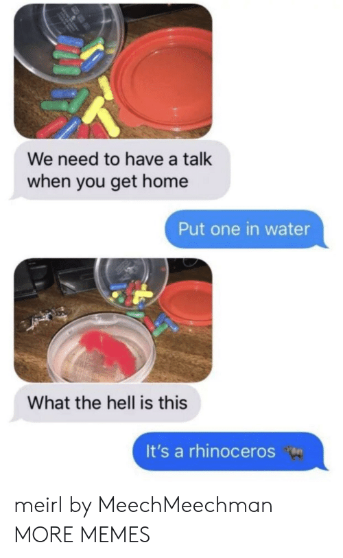 Dank, Memes, and Target: We need to have a talk  when you get home  Put one in water  What the hell is this  It's a rhinoceros meirl by MeechMeechman MORE MEMES