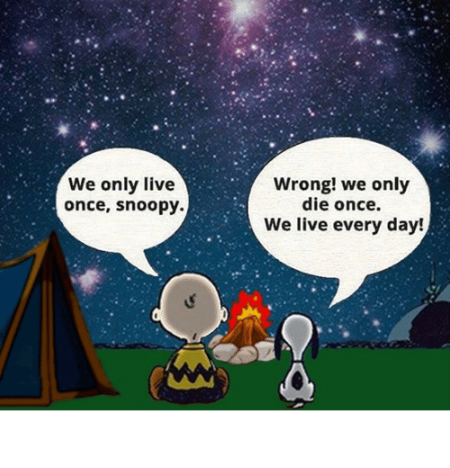 Live, Snoopy, and Once: We only live  once, snoopy.  Wrong! we only  die once.  We live every day! You live every day.