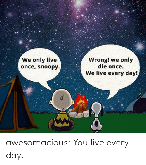 Tumblr, Blog, and Live: We only live  once, snoopy.  Wrong! we only  die once.  We live every day! awesomacious:  You live every day.