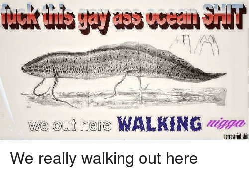 We Out: we out here WALKING ma  terrestrial shit We really walking out here