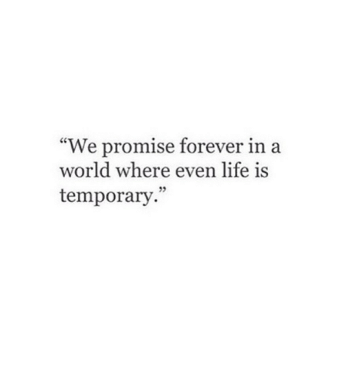 """Life, Forever, and World: """"We promise forever in a  world where even life is  temporary."""