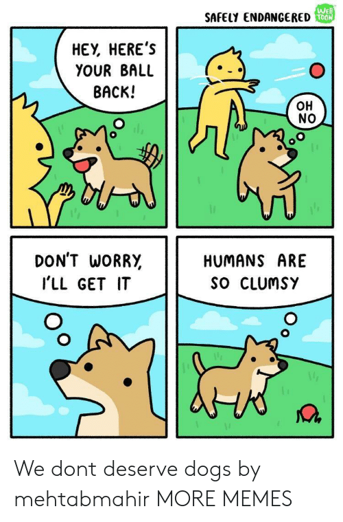 Dank, Dogs, and Memes: We  SAFELY ENDANGERED  HEY, HEREs  YOUR BALL  BACK!  OH  NO  DON'T WORR,  I'LL GET IT  HUMANS ARE  SO CLUmsY We dont deserve dogs by mehtabmahir MORE MEMES