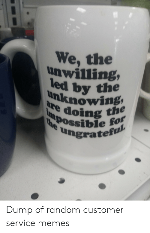 Memes, Random, and Led: We, the  unwilling,  led by the  unknowing  are doing the  Inmpossible for  the  ungrateful Dump of random customer service memes