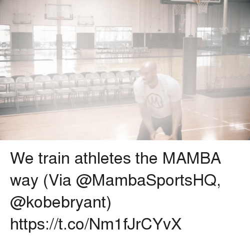 Memes, Train, and 🤖: We train athletes the MAMBA way  (Via @MambaSportsHQ, @kobebryant)    https://t.co/Nm1fJrCYvX