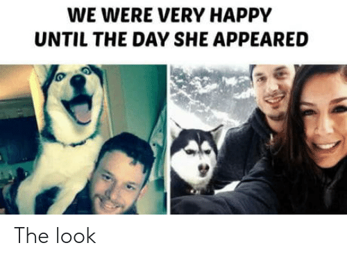 Happy, Day, and She: WE WERE VERY HAPPY  UNTIL THE DAY SHE APPEARED The look