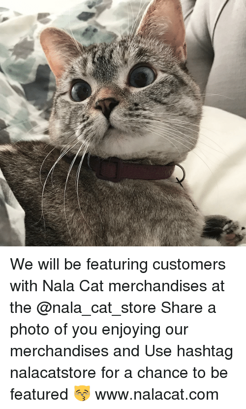 merchandiser: We will be featuring customers with Nala Cat merchandises at the @nala_cat_store Share a photo of you enjoying our merchandises and Use hashtag nalacatstore for a chance to be featured 😽 www.nalacat.com