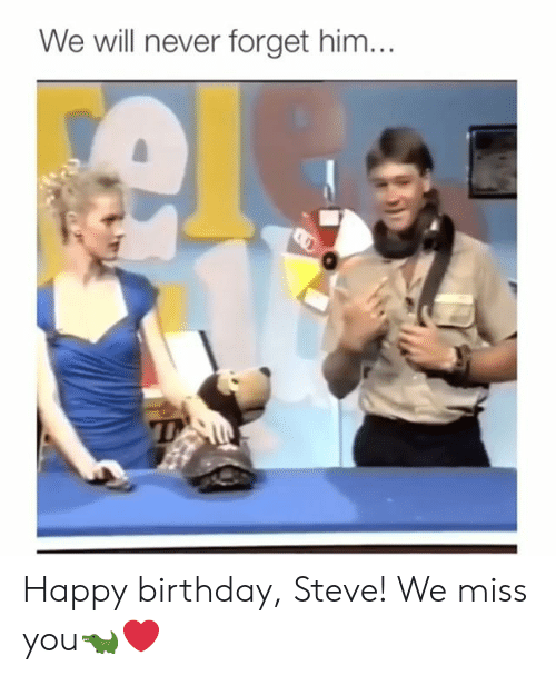 We Miss You: We will never forget him... Happy birthday, Steve! We miss you🐊❤️