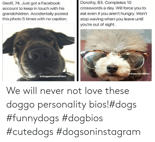 bios: We will never not love these doggo personality bios!#dogs #funnydogs #dogbios #cutedogs #dogsoninstagram