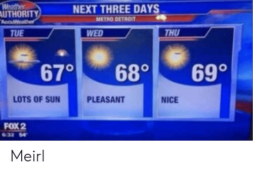 Thu: Weather  AUTHORITY  AccuWeather  NEXT THREE DAYS  METRO DETROIT  THU  WED  TUE  690  670  680  LOTS OF SUN  PLEASANT  NICE  FOX 2  6.32 54 Meirl