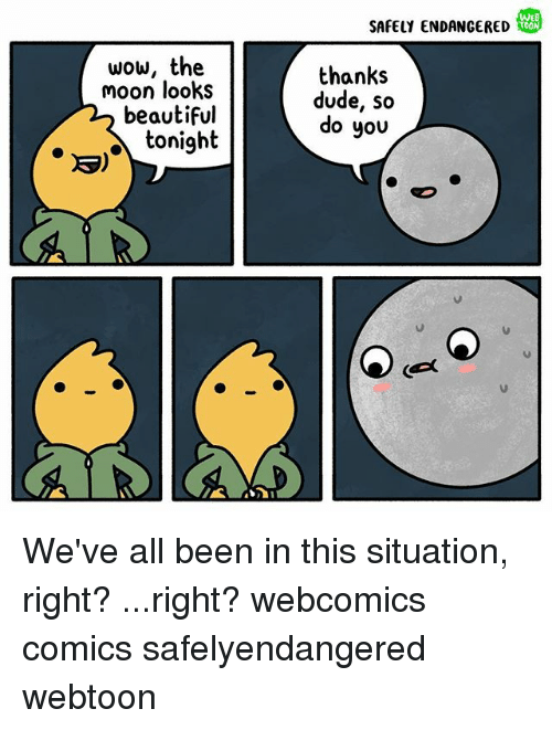 Mooned: WEB  SAFELY ENDANGERED  wow, the  moon looks  beautiful  tonight  thanks  dude, so  do you We've all been in this situation, right? ...right? webcomics comics safelyendangered webtoon