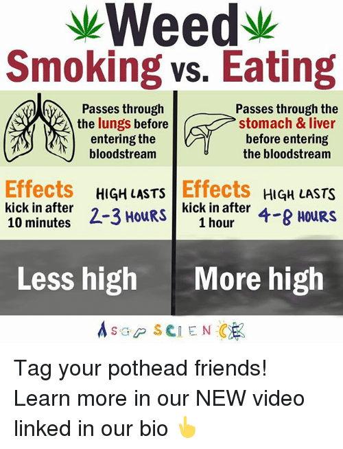Memes, 🤖, and Liver: Weedy  Smoking vs. Eating  Passes through the  Passes through  the lungs before  stomach & liver  before entering  entering the  bloodstream  the bloodstream  Effects  HIGH LASTS  Effects  HIGH LASTS  kick in after  2-3 HOURS  kick in after  4-8 HOURS  1 hour  10 minutes  Less high  More high  s GP SCIENCE Tag your pothead friends! Learn more in our NEW video linked in our bio 👆