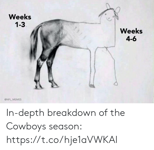 breakdown: Weeks  1-3  Weeks  4-6  @NFL_MEMES In-depth breakdown of the Cowboys season: https://t.co/hje1aVWKAl