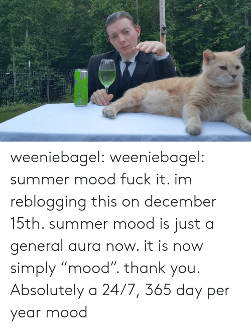 """Mood, Tumblr, and Summer: weeniebagel: weeniebagel:  summer mood  fuck it. im reblogging this on december 15th. summer mood is just a general aura now. it is now simply""""mood"""". thank you.   Absolutely a 24/7, 365 day per year mood"""