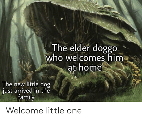 welcome: Welcome little one