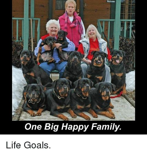 one big happy: Welcome  One Big Happy Family. Life Goals.