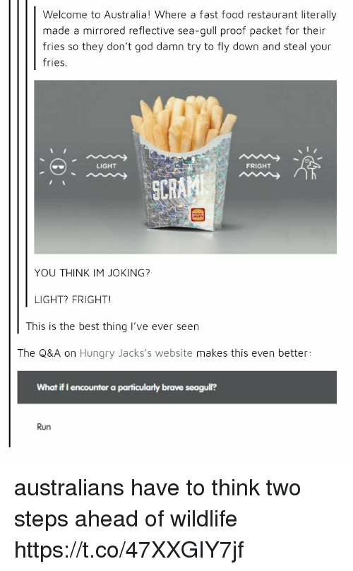 fast-food-restaurant: Welcome to Australia! Where a fast food restaurant literally  made a mirrored reflective sea-gull proof packet for their  fries so they don't god damn try to fly down and steal your  fries  LIGHT  FRIGHT  ECRK  YOU THINK IM JOKING?  LIGHT? FRIGHT!  This is the best thing I've ever seen  The Q&A on Hungry Jacks's website makes this even better:  What if I encounter a particularly brave seagull?  Run australians have to think two steps ahead of wildlife https://t.co/47XXGIY7jf