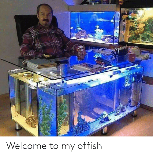 welcome: Welcome to my offish
