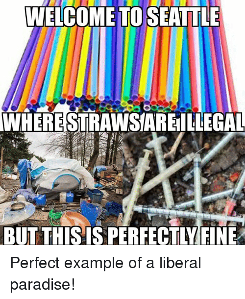 Memes, Paradise, and Seattle: WELCOME TO SEATTLE  WHERESTRAWSIAREIILLEGAL  BUTTHIS IS PERFECTLY FINE Perfect example of a liberal paradise!
