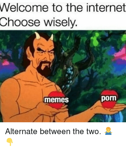 Internet, Memes, and Porm: Welcome to the internet  Choose wisely  memes  porm Alternate between the two. 🤷‍♂️👇