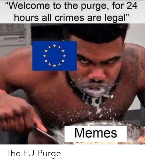 """Memes, The Purge, and All: """"Welcome to the purge, for 24  hours all crimes are legal  Memes The EU Purge"""
