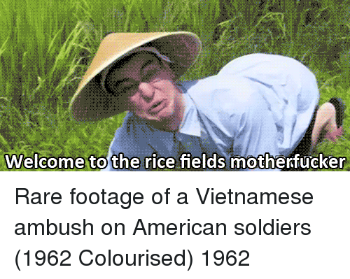 Soldiers, American, and Vietnamese: Welcome to the rice fields motherfucker Rare footage of a Vietnamese ambush on American soldiers (1962 Colourised) 1962