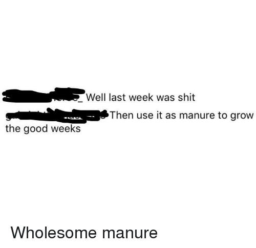 Shit, Good, and Wholesome: Well last week was shit  Then use it as manure to grow  the good weeks Wholesome manure