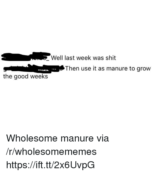 Shit, Good, and Wholesome: Well last week was shit  Then use it as manure to grow  the good weeks Wholesome manure via /r/wholesomememes https://ift.tt/2x6UvpG