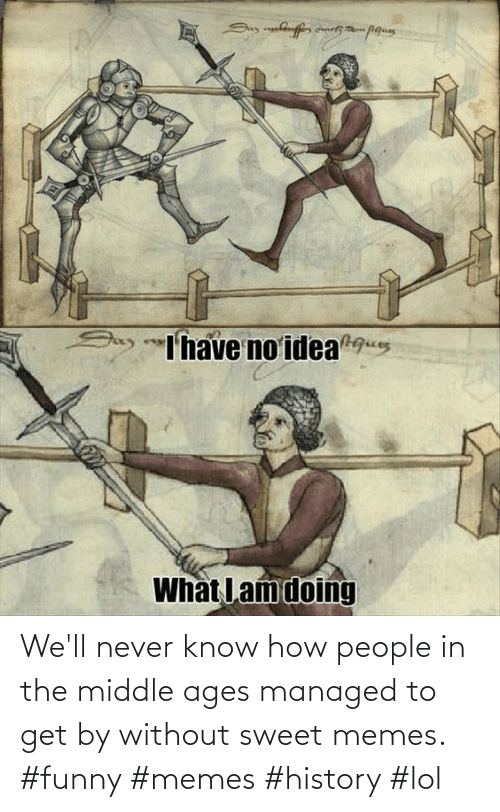 Know How: We'll never know how people in the middle ages managed to get by without sweet memes. #funny #memes #history #lol
