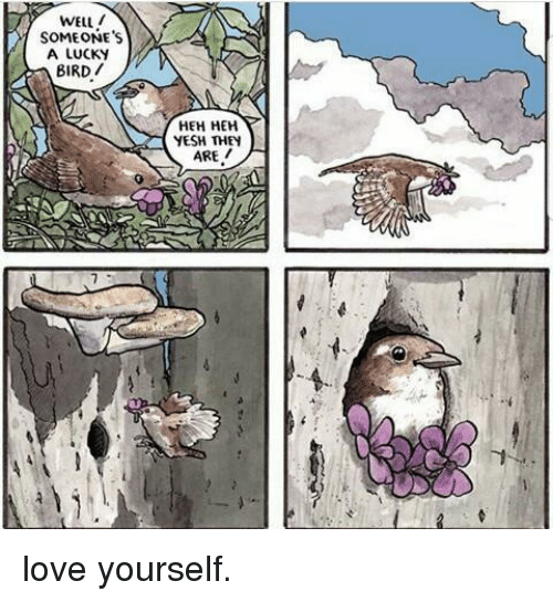 Love, They, and Well: WELL  SOMEONE'S  A LUCKY  BIRD/  HEH HEH  YESH THEY  ARE / love yourself.
