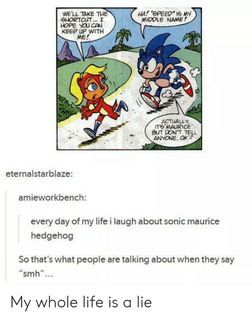 """maurice: WE'LL TAKE THE  SHORTCUT... I  HOPE YOU CAN  KEEP UP WITH  ME!  MIDDLE NAME!  ACTUALLY  BUT DON'T TELL  ANYONE. Ok?  eternalstarblaze  amieworkbench:  every day of my life i laugh about sonic maurice  hedgehog  So that's what people are talking about when they say  """"smh""""... My whole life is a lie"""